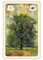 Kartendeck Lenormand No.5 Baum