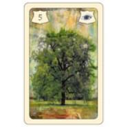 """Brittas Wahrsagekarten -  """"Madame Lenormand""""  Zeit-u.Zukunftskarten mit Symbolen"""