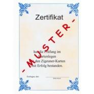 Zigeunerkarten Fernkurs Prüfung (Ebook)